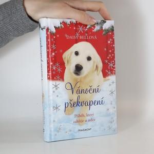 náhled knihy - Vánoční překvapení