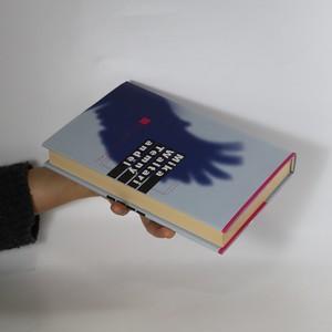antikvární kniha Temný anděl, 2000