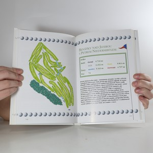 antikvární kniha Klíč k českým golfovým hřištím 10., 2009