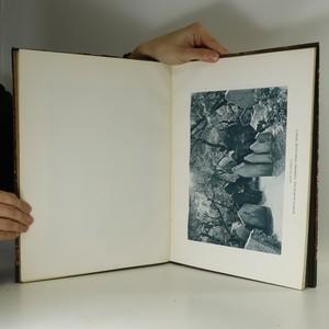 antikvární kniha Starý židovský hřbitov pražský, 1903