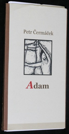 náhled knihy - Adam 2002-2003