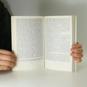antikvární kniha České rozhovory ve světě, 1992