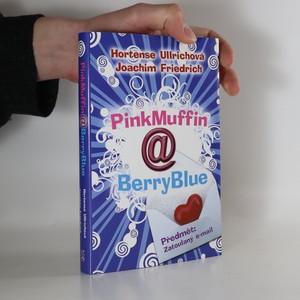 náhled knihy - PinkMuffin@BerryBlue. Předmět - zatoulaný e-mail
