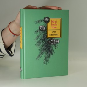 náhled knihy - Dávné kouzlo Vánoc
