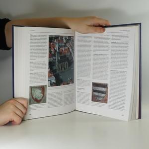 antikvární kniha Encyklopedie českých dějin, 2008