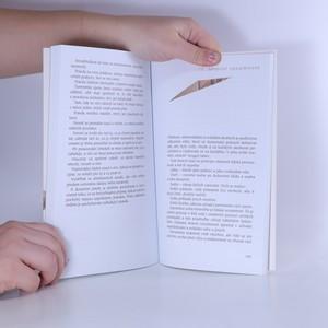 antikvární kniha Slepování střepů : Komenského návrat, 2007