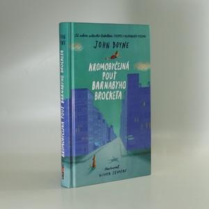 náhled knihy - Kromobyčejná pouť Barnabyho Brocketa