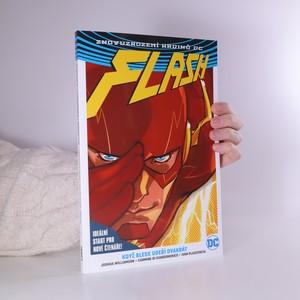 náhled knihy - Flash. Když blesk udeří dvakrát