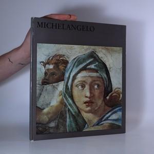 náhled knihy - Michelangelo. Mit achtzehn farbigen Tafeln und sechsundvierzig einfarbigen Abbildungen