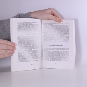 antikvární kniha Až do krajnosti. Kněz mezi mladými na okraji společnosti, 1994