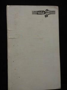 náhled knihy - Svatý Michal (Ocpl, 208 s., b. ob., raz.)