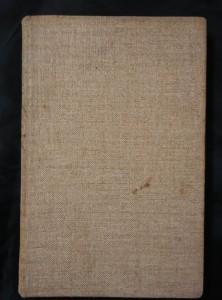 náhled knihy - Žalář (Ocpl)