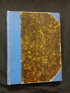 náhled knihy - Lví stopou (usp. K. V. Rais, il. V. Oliva)