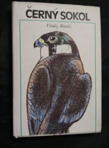 náhled knihy - Černý sokol (Ocpl., 208 s., il. D. Černá)