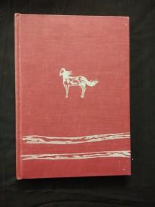 náhled knihy - Divoké prázdniny (Ocpl, 92 s., il. D. Berková, bez přeb.)