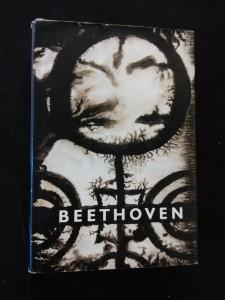 Beethoven/ Velká tvůrčí období Nedokončená katedrála I - Devátá symfonie (Ocpl, 188 s.)