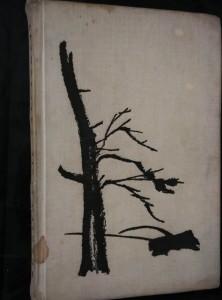 náhled knihy - Král Šumavy