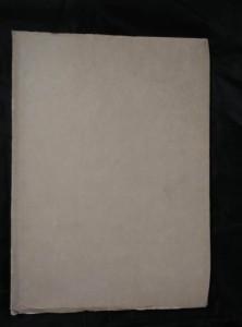 náhled knihy - Václav Rabas (A4, Obr, 42 s., 41 s. obr příl.)