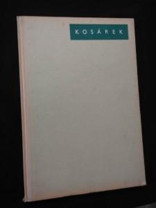náhled knihy - Adolf Kosárek (A4, Oppl, 28 vyobr.)
