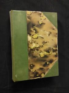 náhled knihy - U-A, král opic (Oppl, 238 s., obálka vevázána)