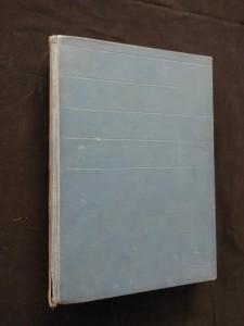 náhled knihy - Jaroslav Hašek doma (Ocpl, 268 s.)