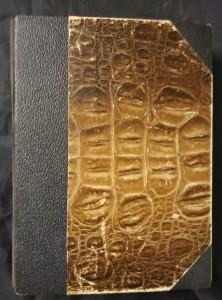 náhled knihy - Řezník verdunský (Ppl, 490 s.)