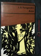 náhled knihy - Asja (Ocpl, 90 s., ob a il L. Jiřincová)