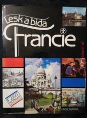 náhled knihy - Lesk a bída Francie