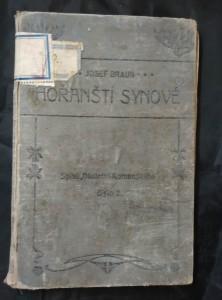 náhled knihy - Hořanští synové (Ocpl, 112 s.)