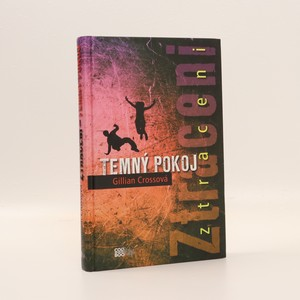 náhled knihy - Temný pokoj