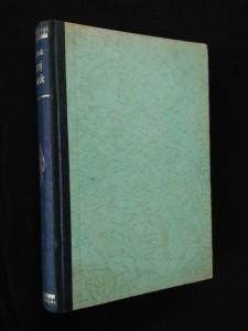 náhled knihy - Černý Honzík - román o Janu Nerudovi (Oppl, 311 s.)