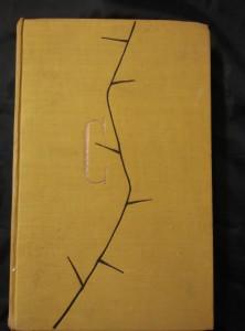 náhled knihy - Žena (Ocpl, 240 s., bez ob.)