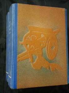 náhled knihy - Vojáci císařovi I, II (Ppl, 468 a 498 s., ob. A. L. Salač veváz.).