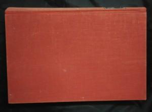 náhled knihy - Vosí hnízdo (Ocpl)