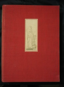 náhled knihy - Příběhy dona Quijota (A4, Ocpl, 358 s., il. F. Tichý, raz., b ob.)