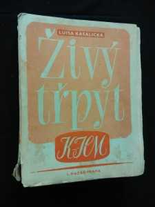 náhled knihy - Živý třpyt - Dílo Karla Hynka Máchy (A4, Obr, 408 s., il. L. Jiřincová)