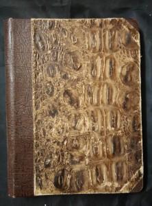 náhled knihy - Tajemství stříbrného auta (Oppl.,256 s.)