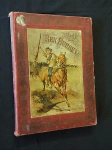 náhled knihy - Mladý rek Burský (Ocpl, 144 s., il. V. Černý)