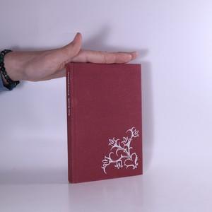 náhled knihy - Podivné prázdniny