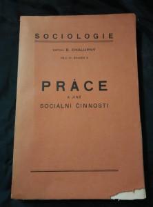 náhled knihy - Práce a jiné sociální činnosti (A4, Obr, 352 s.)