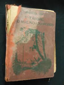náhled knihy - V táboře pod malinovou horou (A4, Oppl, 270 s., il.M. Novák)