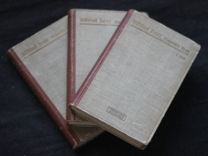 náhled knihy - Nikolaus Lenau vusgemählte werke  I.-III. band