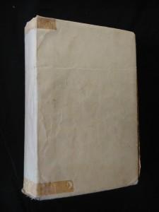 náhled knihy - Ve dvou se to lépe táhne - J. Hašek (pv, 542 s., il.)