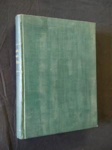 náhled knihy - Ad hoc! - romaneta, povídky, črty (Ocpl, 198 s.)