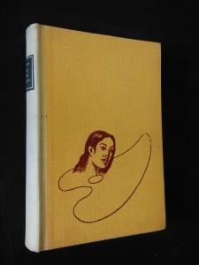 náhled knihy - Stín přes paletu (P. Gaugin)