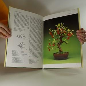 antikvární kniha Bonsai, 1991