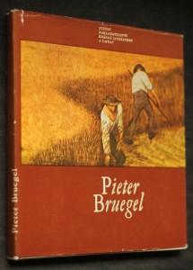 náhled knihy - Pieter Bruegel