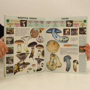 antikvární kniha Самые распространенные съедобные грибы. (Nejběžnější jedlé houby), 2007