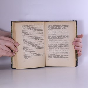 antikvární kniha V družině dobrodruha krále. 4. díl, 1927