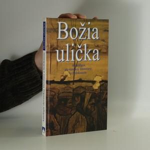 náhled knihy - Božia ulička. Antológia slovenskej literatúry o holokauste